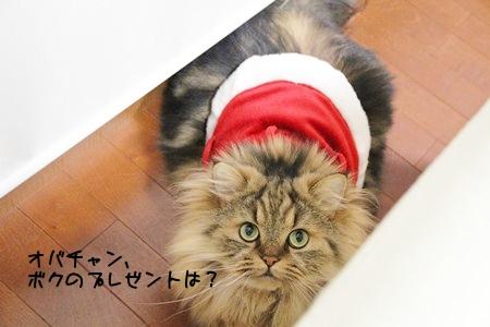 プレゼントくれ!