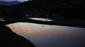 棚田の夕日 水面に映る雲
