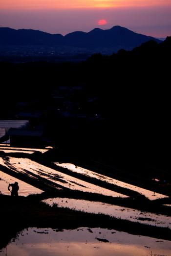 棚田の夕日 畦を造る人_1