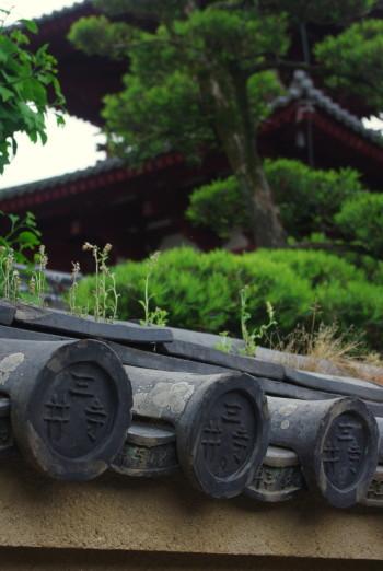 三井寺の瓦