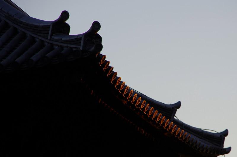 ならこうえん 興福寺三重塔2