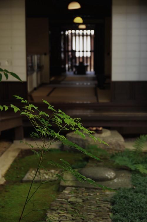 格子の家 坪庭