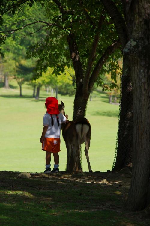 奈良公園 園児と鹿2