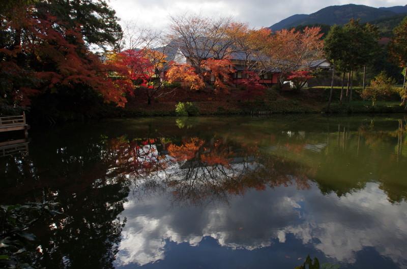 高鴨神社 池に映る紅葉と金剛・葛城山系