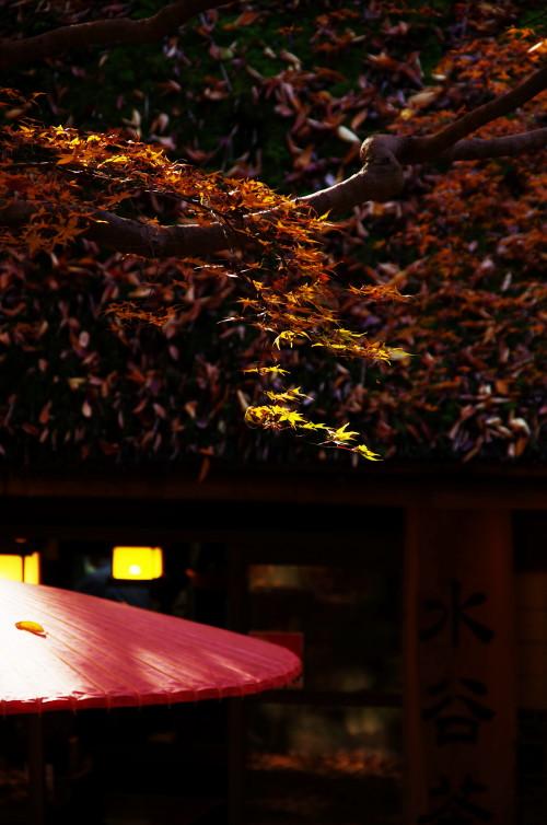 水谷橋 茶屋の傘