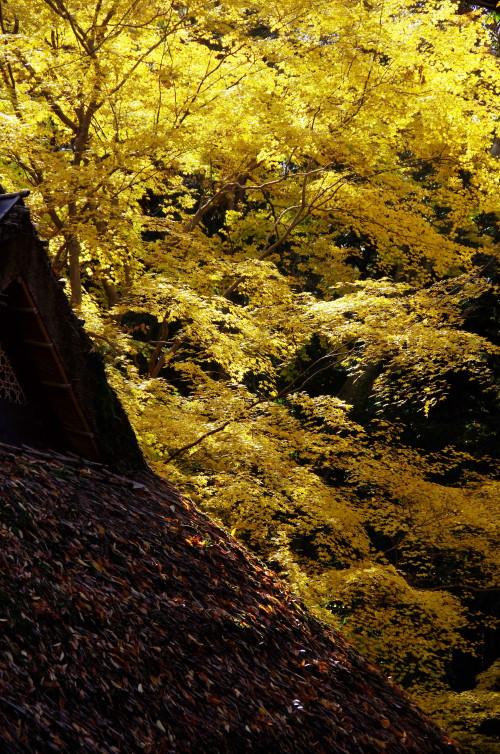 水谷橋 茶屋の茅葺