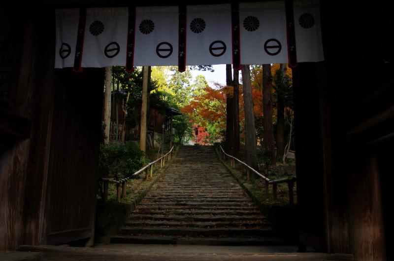 松尾寺 山門