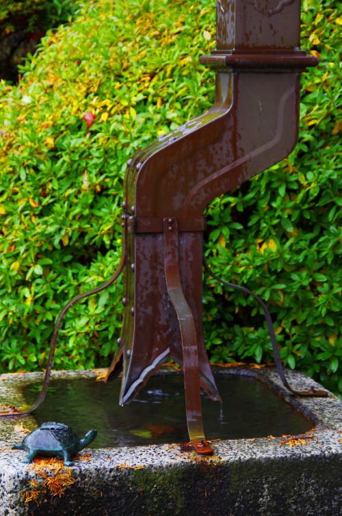 九品寺 雨水桶