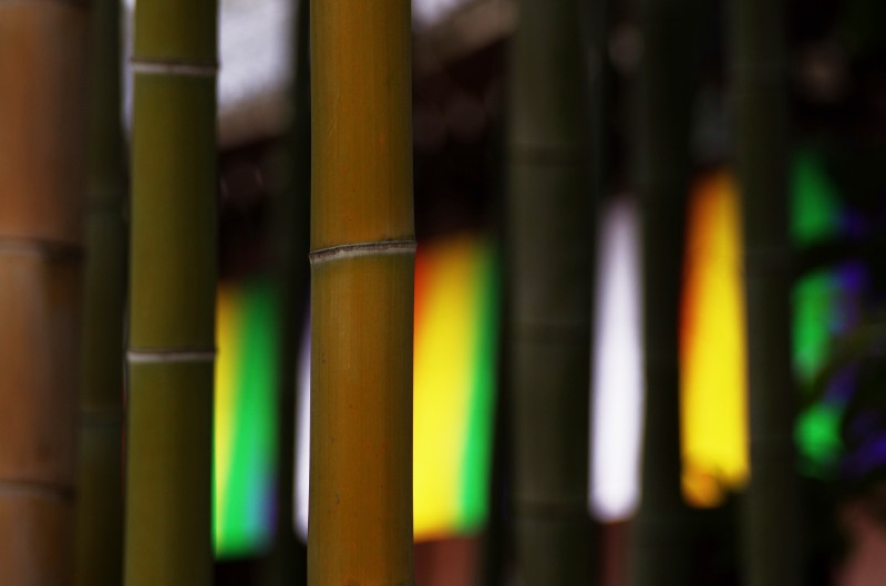 大安寺 竹と旗