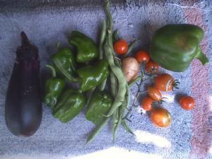 7-10収穫
