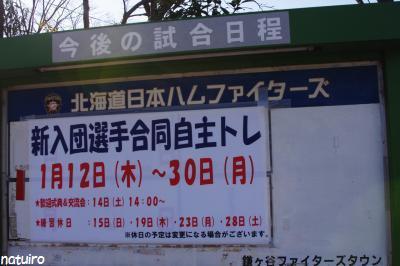 1月29日鎌スタ1