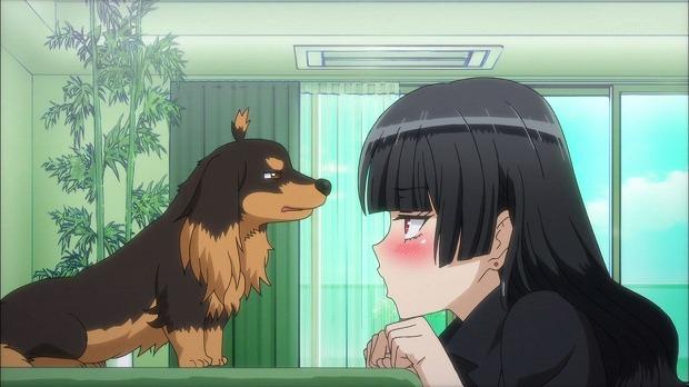 犬ハサ 12話29