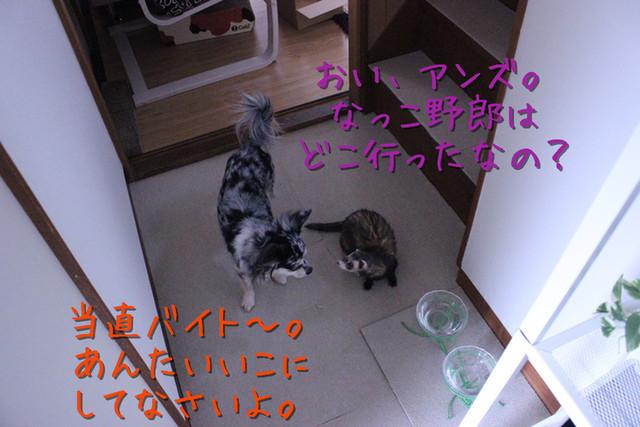 kako-K5K57wJ64elBQ5g9.jpg
