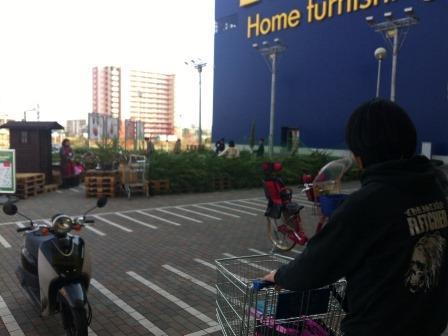 IKEAモミの木を買いに201315
