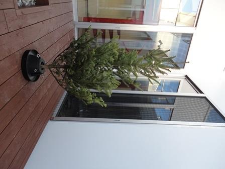 クリスマスツリーを購入2013