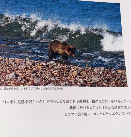 DSC_5393.jpg