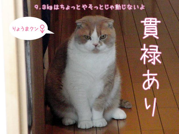20110401_04.jpg