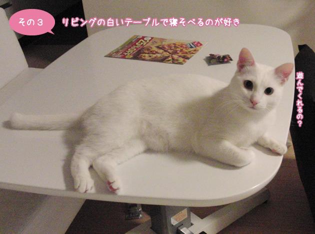 リビングの白いテーブルで寝そべるのが好き