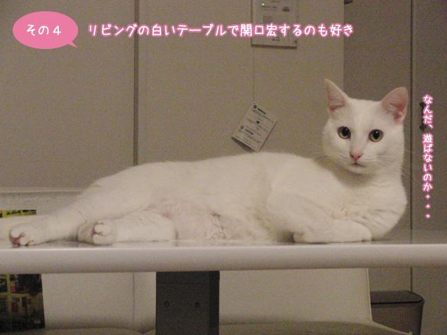 リビングの白いテーブルで関口宏するのも好き