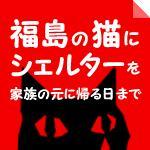 福島の猫にシェルターを