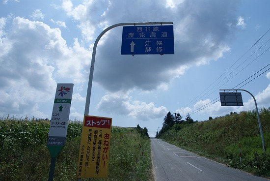 美瑛観光37