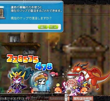 Maple111203_144239.jpg