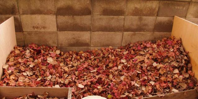 堆肥ボックス (2)