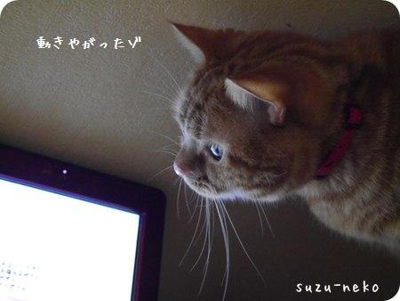 20140112-002.jpg