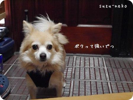 20140112-010.jpg