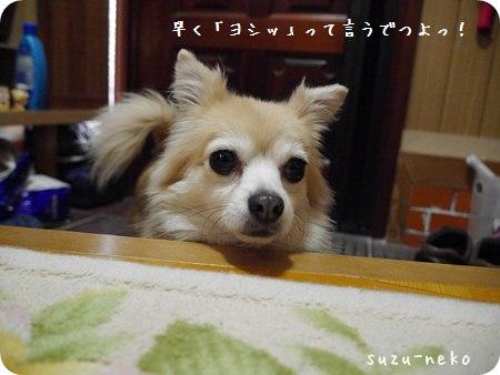 20140112-011.jpg