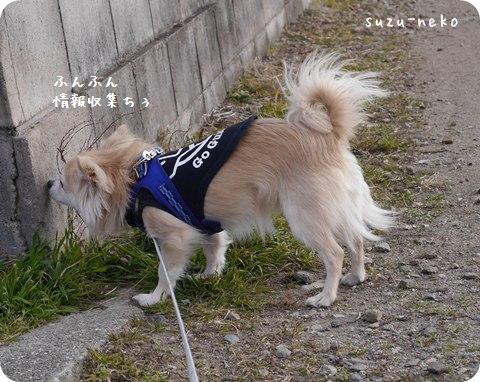 20140122-001.jpg