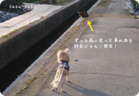 20140131-004.jpg