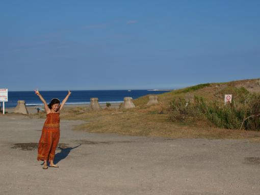 波崎砂丘植物公園の浜