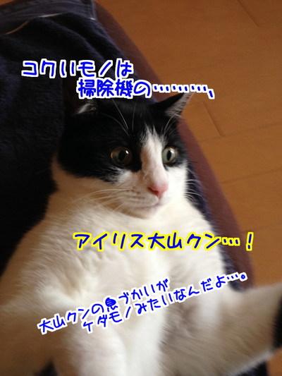 Hn6w4BU0FT9et_K1413977436_1413977667.jpg