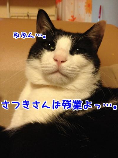 Q5E01MDde_0G5o_1417360276_1417360503.jpg