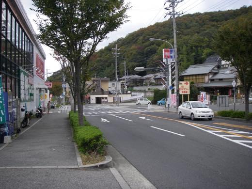 _shishimi001.jpg