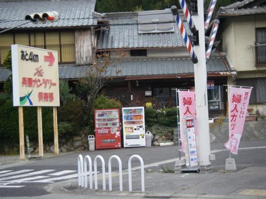 _shishimi002.jpg