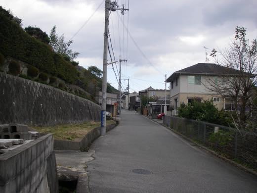 _shishimi004.jpg