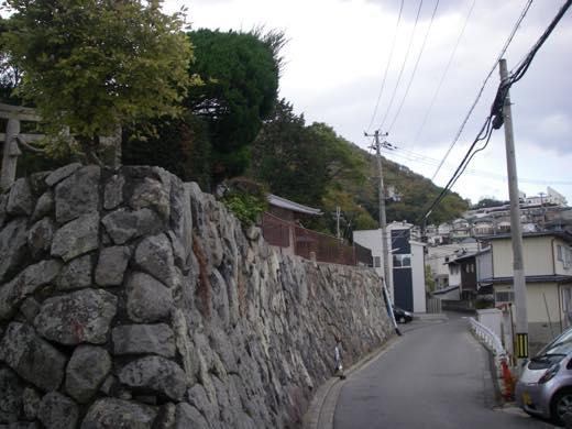 _shishimi005.jpg