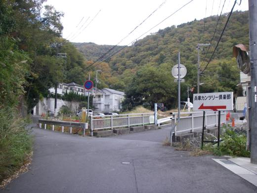 _shishimi007.jpg