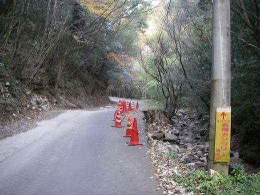 _shishimi022.jpg
