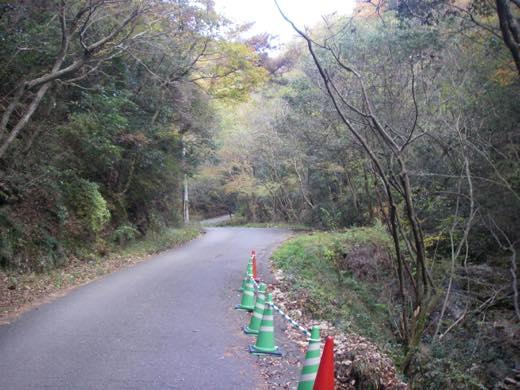 _shishimi023.jpg