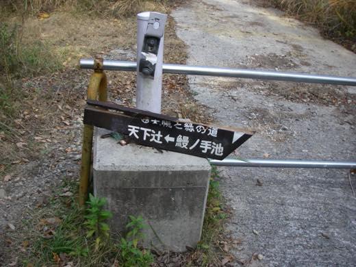_shishimi037.jpg