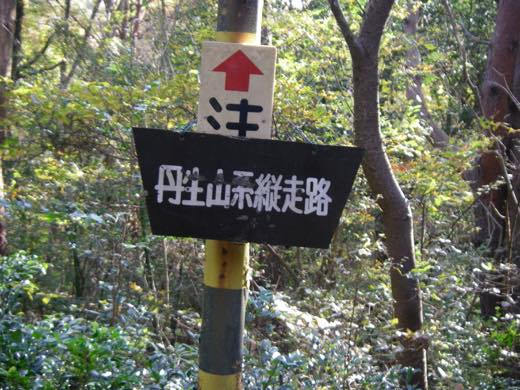 _shishimi053.jpg