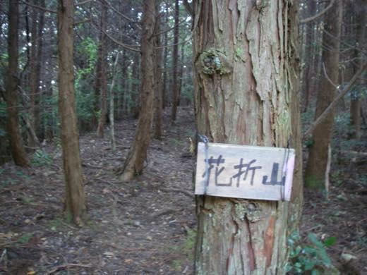_shishimi080.jpg