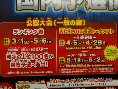 DSC00912_convert_20130221104437.jpg