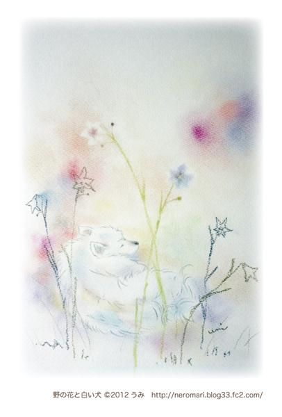 野の花と白い犬-02