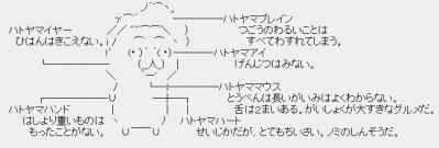 hatoyamaaa.jpg