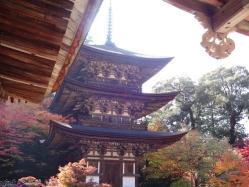 西明寺(4)