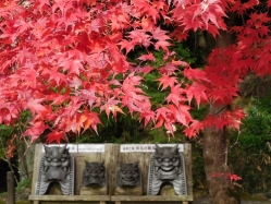 西明寺(2)